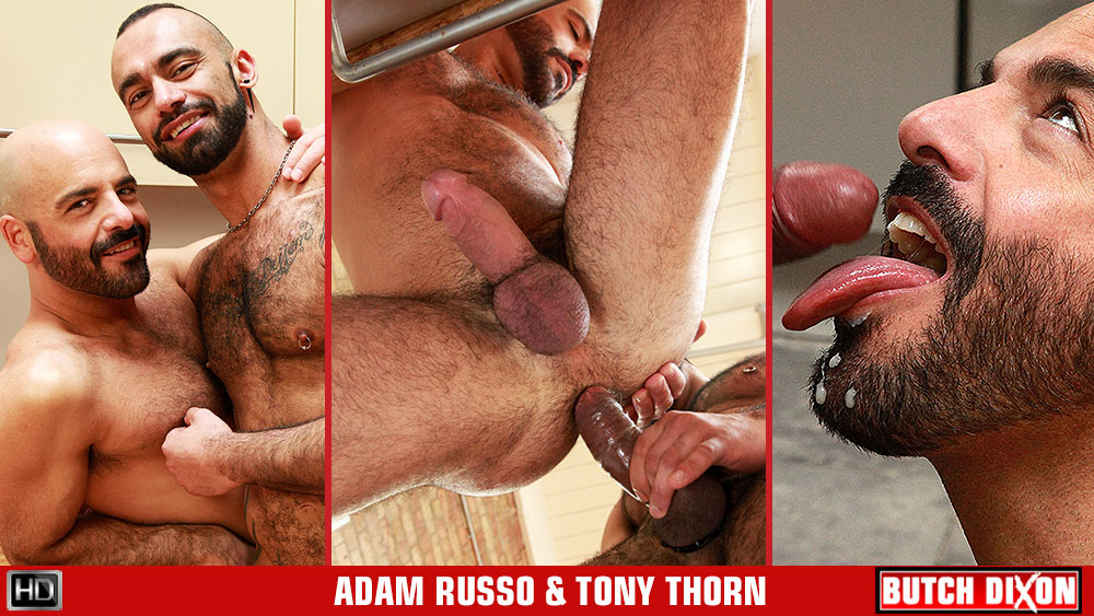 Adam Russo & Tony Thorn